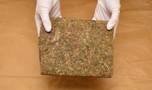 brick-weed