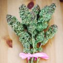 2019 Cannabis Buyers Guide: Mother's Day