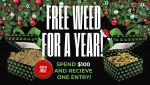 free-cannabis-for-a-year-nevada-made