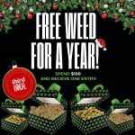 free-cannabis-for-a-year